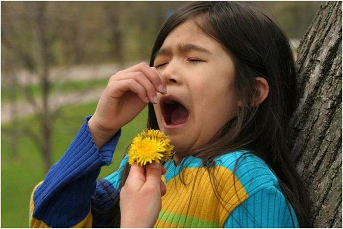 How to Reduce Allergies during Changing Seasons in New York